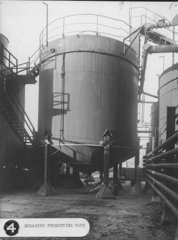 Molasses fermenting vats, circa 1940