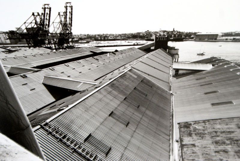 View over roofs of raw sugar store to Glebe Island and White Bay