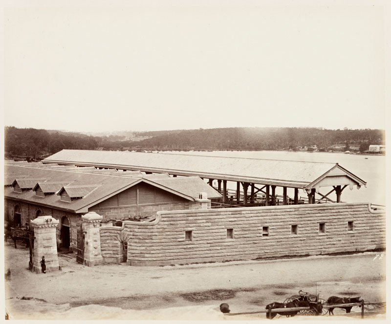 Glebe Island Abattoirs 1872