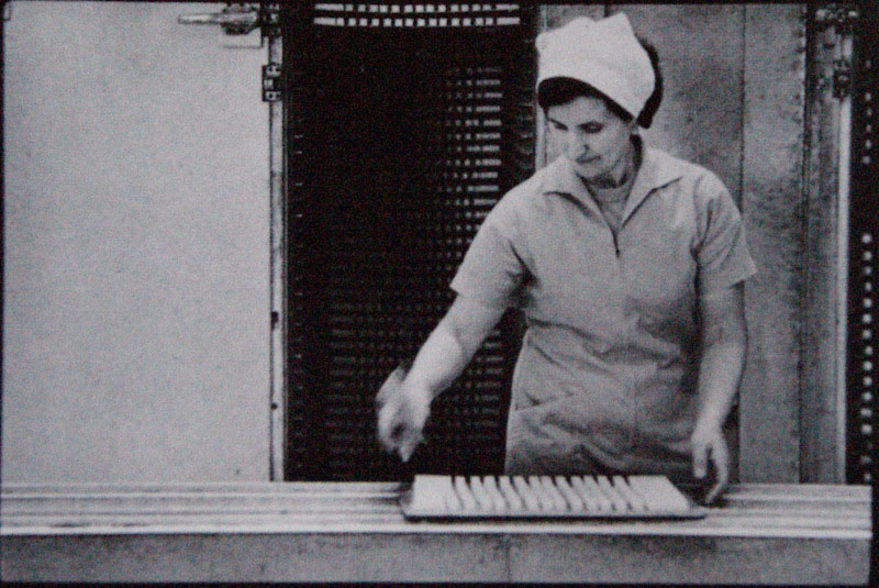 Sandra Edwards, ... 200 trays per oven, from CSR Pyrmont Refinery Centenary 1978 Photography Project.