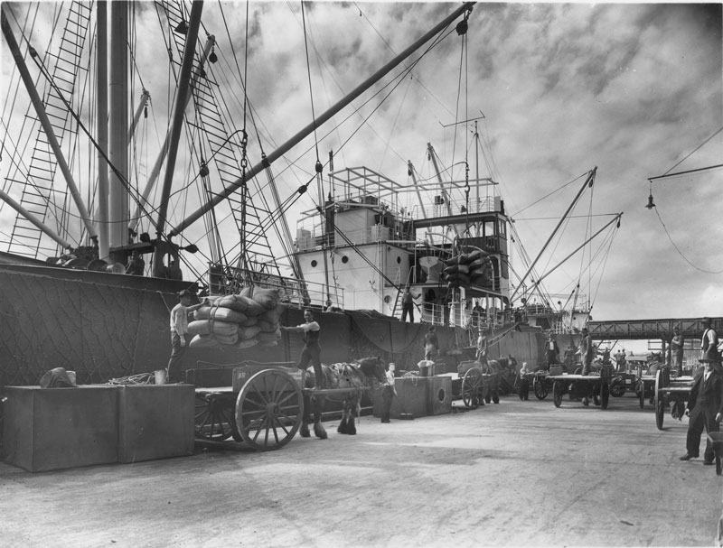 Discharging raw sugar from SS Rona at the CSR wharf, September 1935