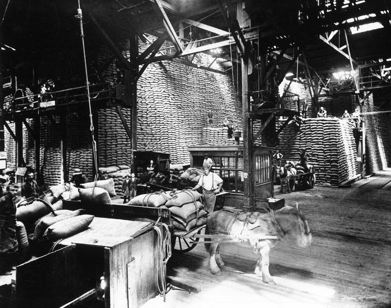 Raw sugar store, circa 1930s