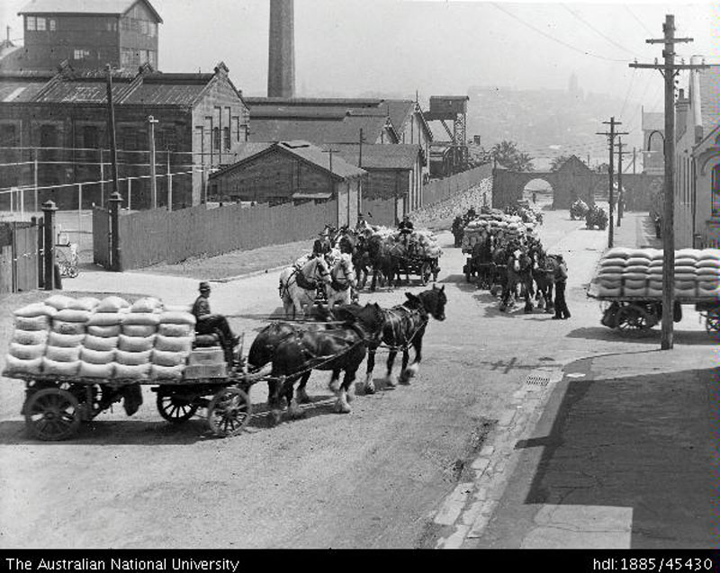 Horse teams going up and down Jones Street 1920s
