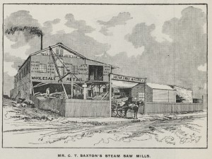 Saxton's steam saw mills,  Illustrated Sydney News, 25 July 1889, p15
